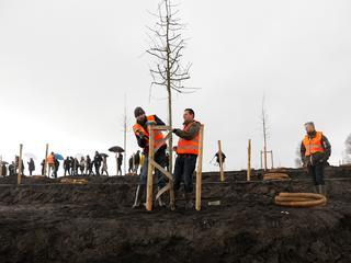 Nabestaanden komen zaterdag naar de plek om meer bomen te plan ten