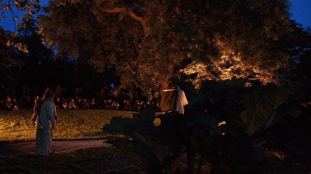 Midzomernacht brengt Hortus in Japanse sferen