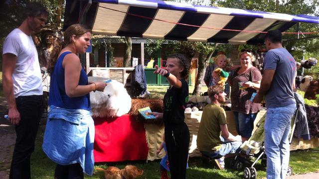 Stralende dag voor Kunst in de Stal Festival