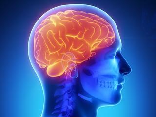 Toegenomen activiteit in gedeelte van brein kan wijzen op hartfalen