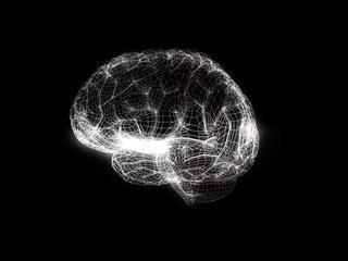 Vijf hersenregio's vallen kleiner uit bij mensen met ADHD