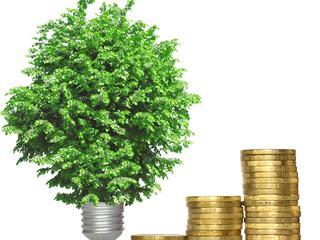 Particulieren beleggen minder groen