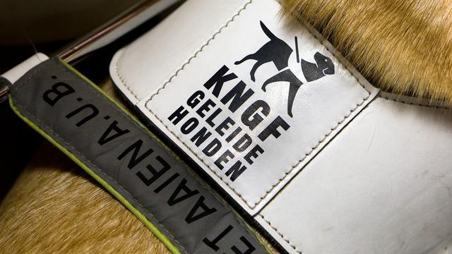 KNGF heeft spijt van te hoge beloning directeur