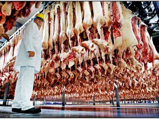 Vleesverwerker Vion publiceert keuringsresultaten