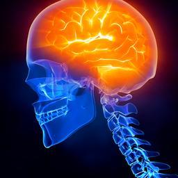 Gezond hart op jonge leeftijd mogelijk van invloed op gezondheid brein