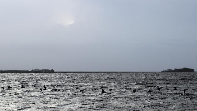 Binnenvaartschip gezonken op IJsselmeer