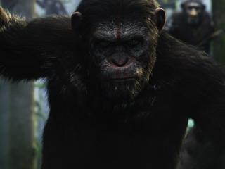 Dawn of the Planet of the Apes minder emotioneel