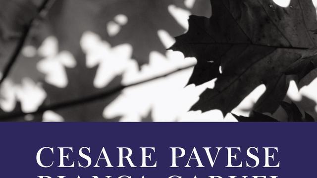Cesare Pavese het grote vuur