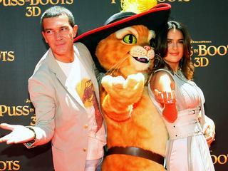 Puss in boots heeft na drie Shrekfilms zijn eigen hoofdrol