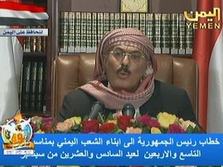 Ali Abdullah Saleh heeft al vaker aangekondigd op te stappen