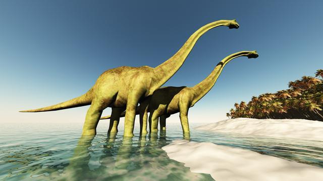 'Langnek-dinosaurussen' zijn Antarctica overgestoken