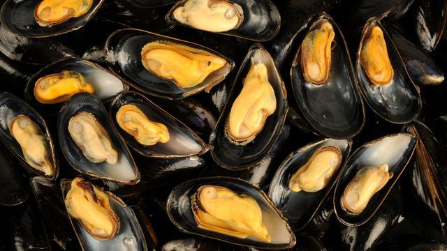Kwaliteit Zeeuwse mosselen beter door warm weer