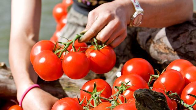 'Tomaten beschermen tegen beroerte'