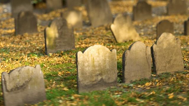 Tientallen graven vernield in Barendrecht