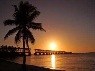 'Florida is snelste stijger'