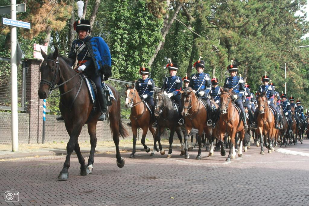 verboden escorte pijpbeurt in Den Haag
