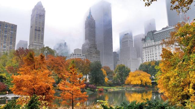 Recorddonatie voor Central Park