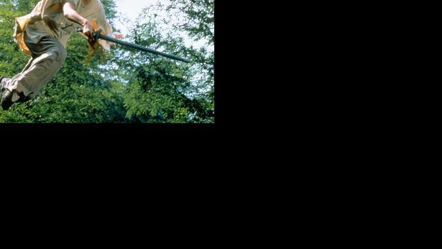 Vervolg voor Crouching Tiger, Hidden Dragon