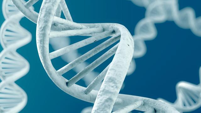 'Hartinfarct wordt mogelijk doorgegeven in genen'