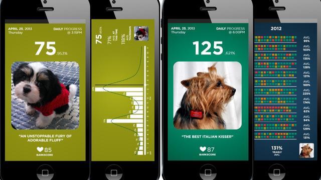 Fitbark laat baasjes activiteit hond volgen