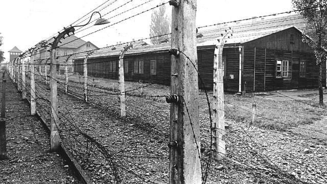 Naakte demonstranten slachten schaap in voormalig kamp Auschwitz