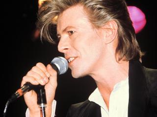 'Bowie hoort bij Berlijn'