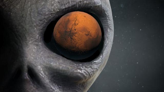 'NASA filmt per ongeluk insect op Mars'