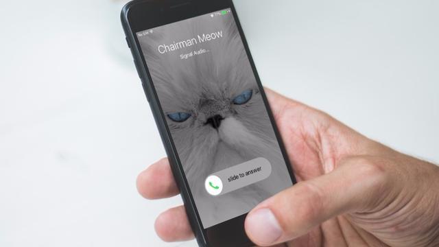 Beveiligde chat-app Signal krijgt videogesprekken