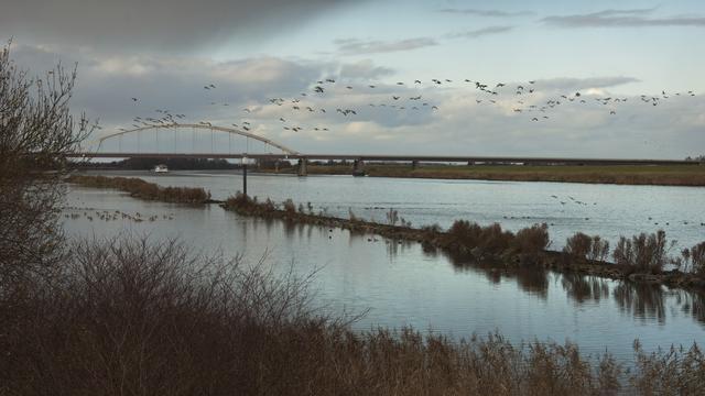 Lichaam in Schelde-Rijnkanaal is van man