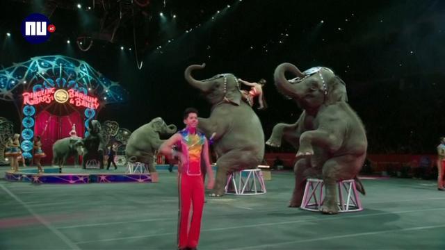 Amerikaans circus 'met droevigste olifantenshow' sluit na bijna 150 jaar