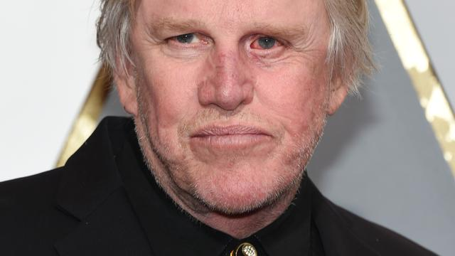 Gary Busey in cast Sharknado 4