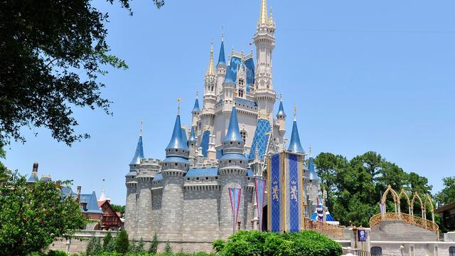 Disneyland en Disney World plaatsen metaaldectoren