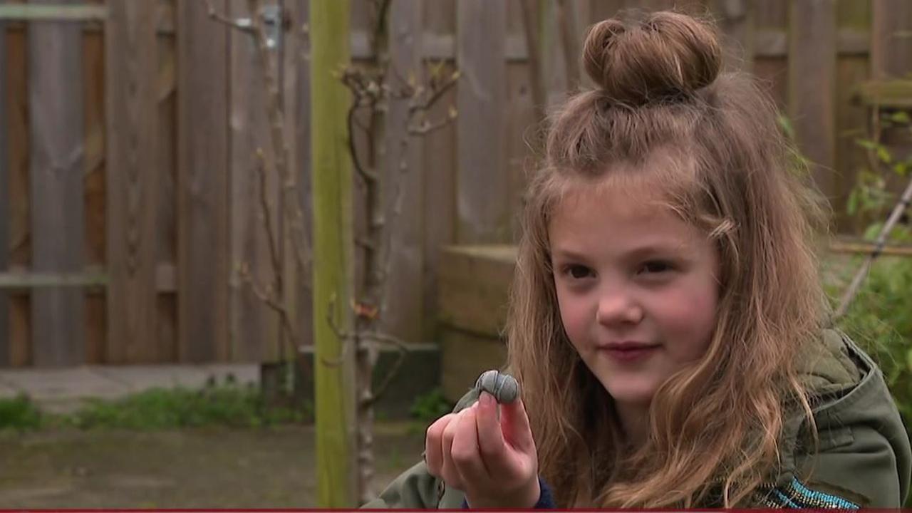 7-jarige Isabella vindt 65 miljoen jaar oud fossiel