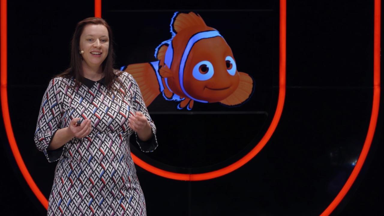 Universiteit van Nederland: Waarom heb jij minder medelijden met een vis dan met een varken
