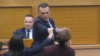 Servische minister van Binnenlandse Zaken slaat oppositielid