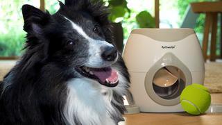 Prul of Praal? Is hondenkoekjesmachine goed dierendagcadeau?