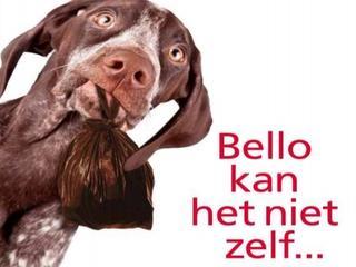 Losloopstroken voor honden ingrijpend gewijzigd