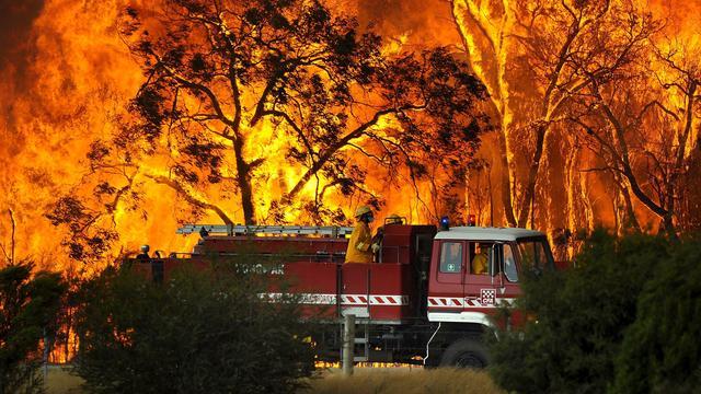 Drie grote bosbranden uit de moderne historie