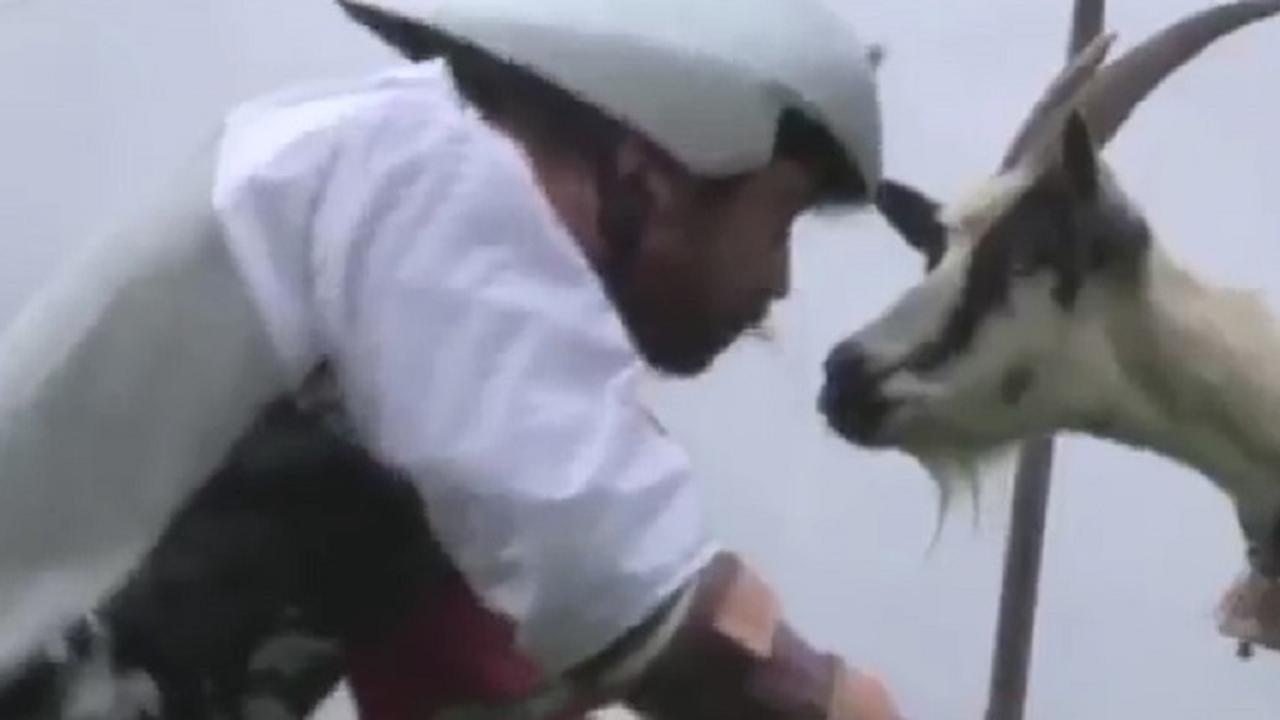 Britse man leeft drie dagen in de Alpen als geit
