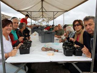 Duizenden bezoekers verwacht voor Mosseldag