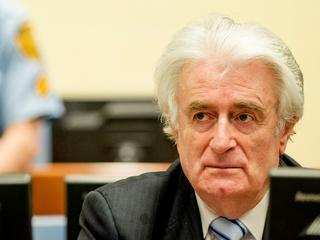 Voormalig Bosnisch-Servische leider in beroep tegen uitspraak