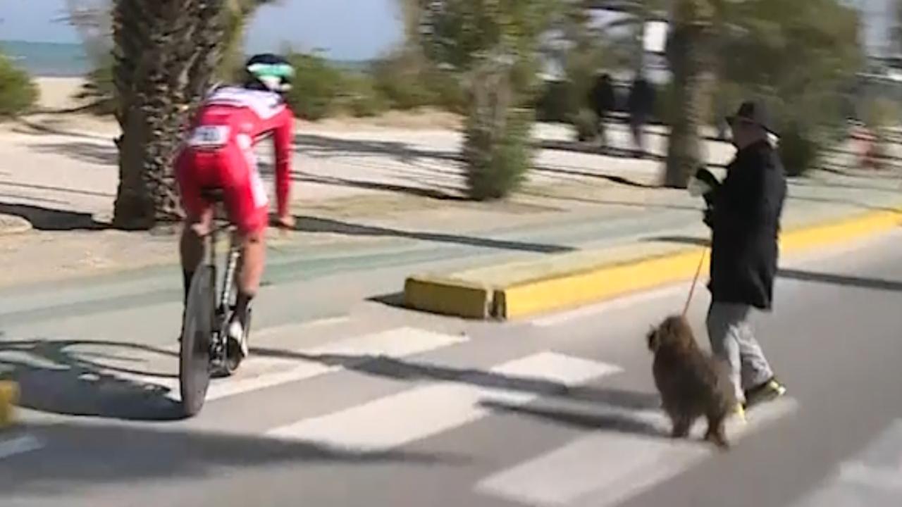 Sagan weet maar net vrouw met hond te ontwijken tijdens tijdrit