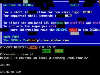 Software was erg schadelijk voor ms-doscomputers