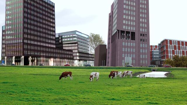 Ondernemers trekken Raad van State-procedure om Oostvlietpolder in