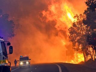 Systeem kan tot 24 uur van tevoren accuraat voorspellen wat bosbrand gaat doen