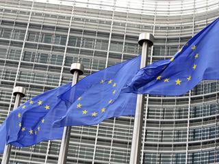 EU gaf grote bedragen uit 'zonder strategie'