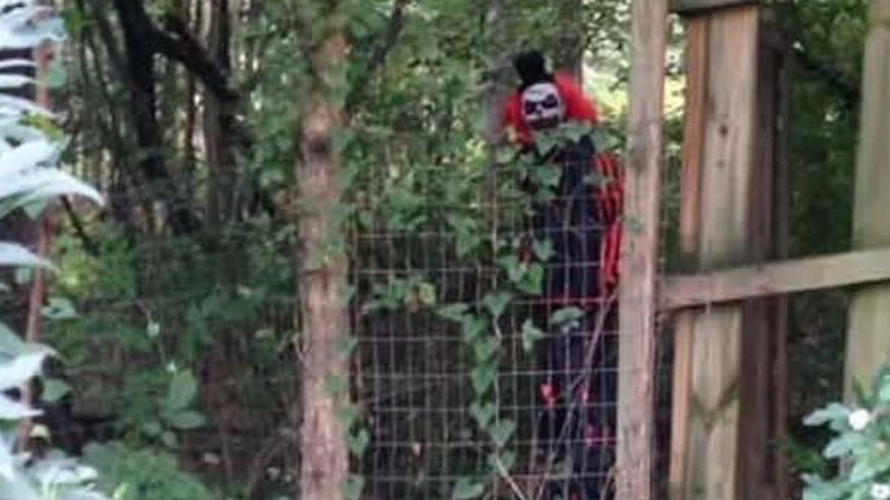 Clown terroriseert bossen in oosten VS