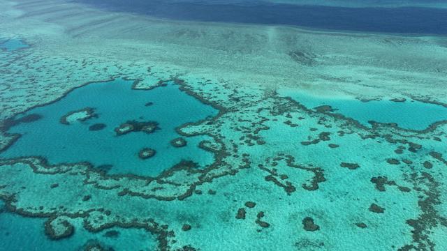 Toeristenboot in brand bij Barrier Reef