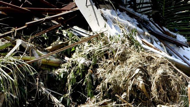 Doden bij aardbeving in noordwesten Tanzania