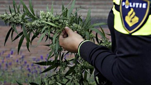 Twee arrestaties wegens hennepkwekerij aan Lijtweg